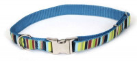 Ошейник Coastal Pet Attire Ribbon для собак, 2,5смХ70см - Фото 4
